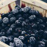 Gluten-Free, Casein-Free Spring Blackberry Cobbler