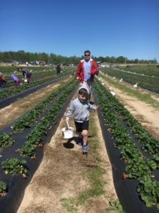 Strawberry Picking for the Win - Ian and Uncle James running through row of strawberries