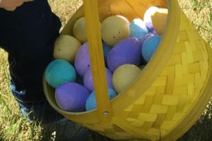 BMB eggs