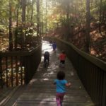 Best Family-Friendly Hiking Trails in Birmingham