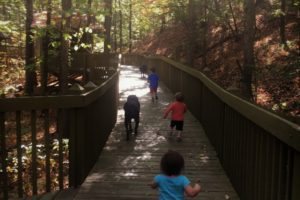 Oak Mountain State Park Family Hiking Trails