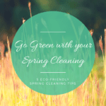 Go Green with Your Spring Cleaning