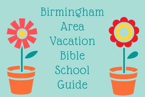 VBS_Guide