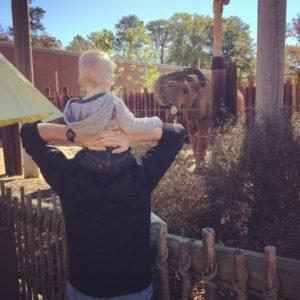 The Birmingham Zoo is in Mountain Brook Village