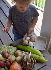 community supported agriculture - CSAs in Birmingham can provide learning opportunities for your kids