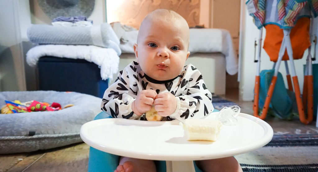 Baby Led Weaning :: Everything You Ever Wanted to Know - Introducing Solids