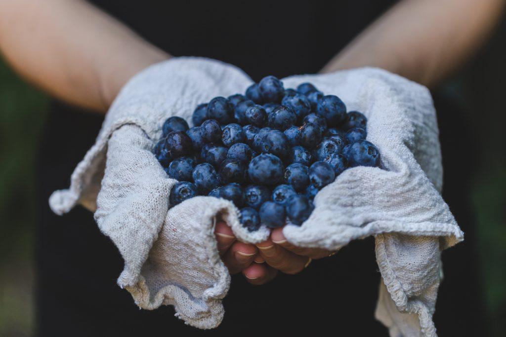 blueberry picking near Birmingham